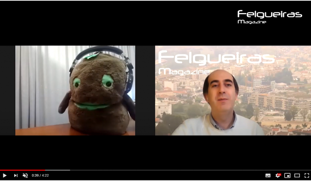 entrevista kiwi de Felgueiras